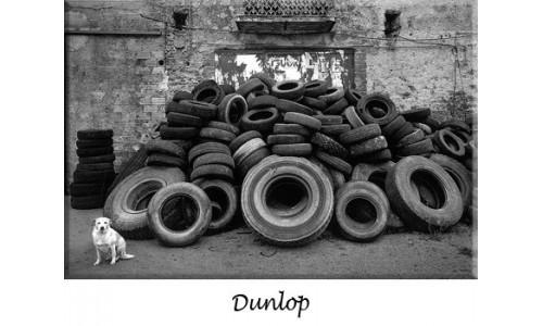 DUNLOP Brakes