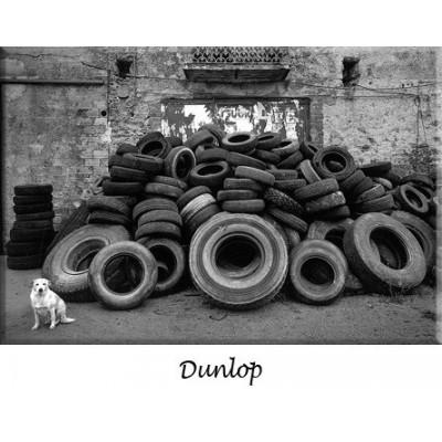 Freni a disco Dunlop