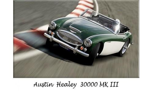 Austin Healy