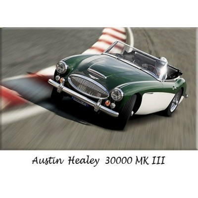 Pare-chocs, Austin Healey 3000, refabrication, inox poli, chrome, remplacement, butoirs, bumpers